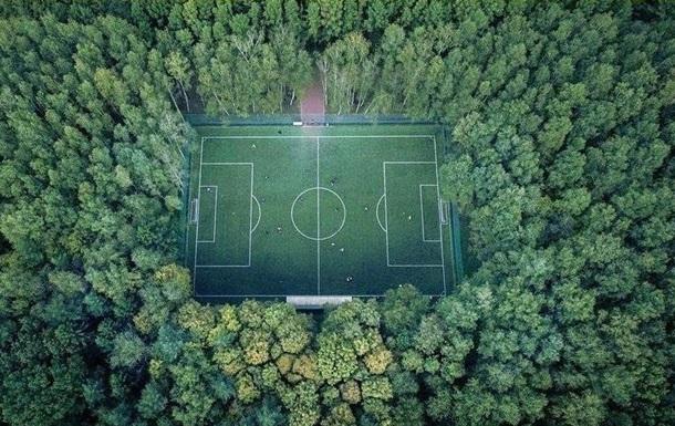 В Украине за год засадили деревьями 54 тысячи гектаров