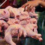 Украина почти вдвое увеличила экспорт мяса птицы