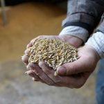 Аграрии начали войну «черного пиара» в СМИ — журналист
